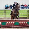2019 Sewickley Hunt Horse Show-WVU-3
