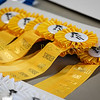 2019 Sewickley Hunt Horse Show-WVU-547