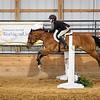2019 Sewickley Hunt Horse Show-WVU-10