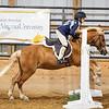 2019 Sewickley Hunt Horse Show-WVU-587