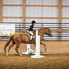 2019 Sewickley Hunt Horse Show-WVU-591