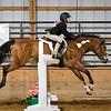 2019 Sewickley Hunt Horse Show-WVU-530