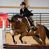 2019 Sewickley Hunt Horse Show-WVU-537