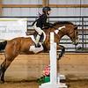 2019 Sewickley Hunt Horse Show-WVU-529