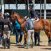 2020  Sewickley Hunt Horse Show-96