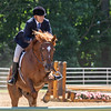 2020  Sewickley Hunt Horse Show-61