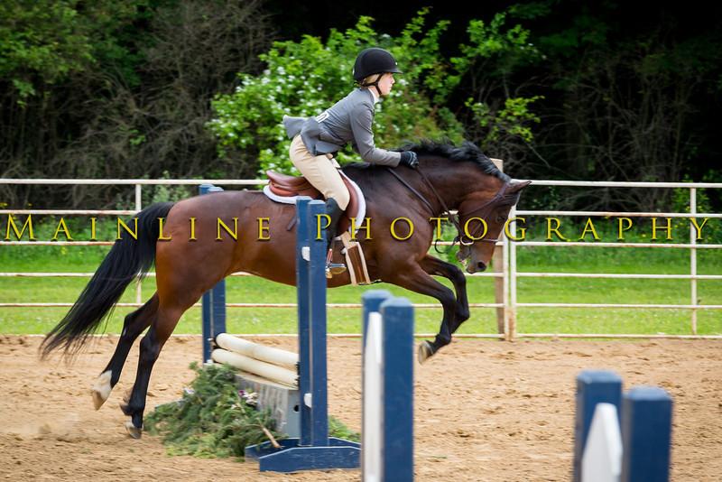 Sewickley Hunt June Show-748