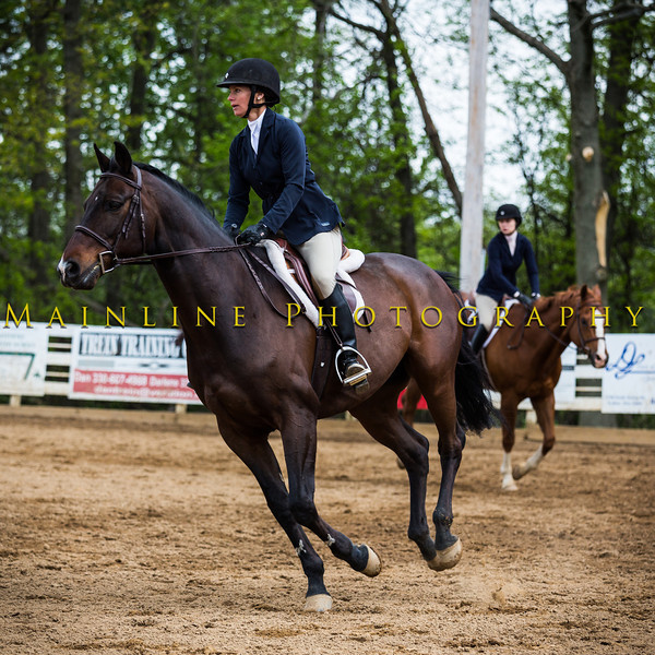 Sewickley Hunt Show May 2013-247-2