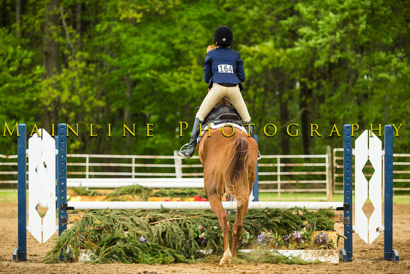 Sewickley Hunt Show May 2013-98-2