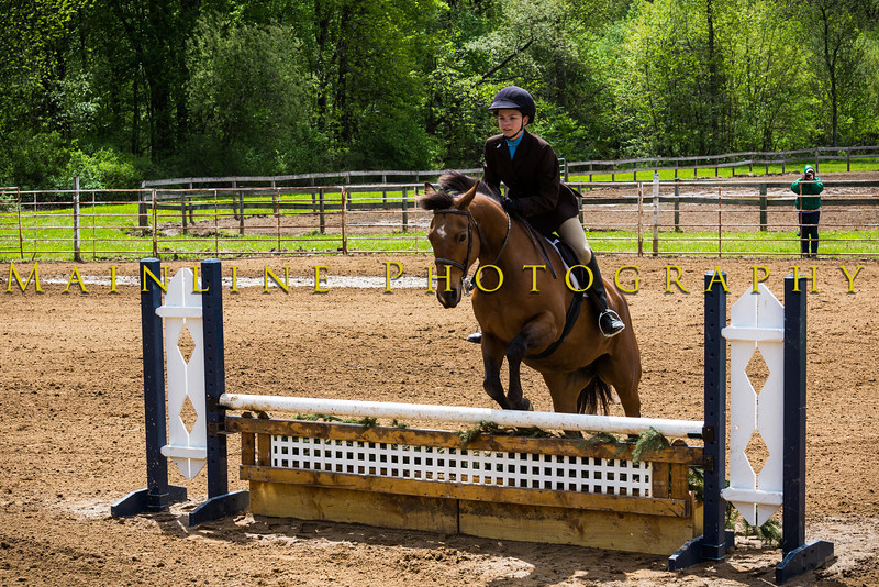 Sewickley Hunt Show May 2013-287-2