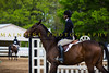 Sewickley Hunt Show May 2013-245-2