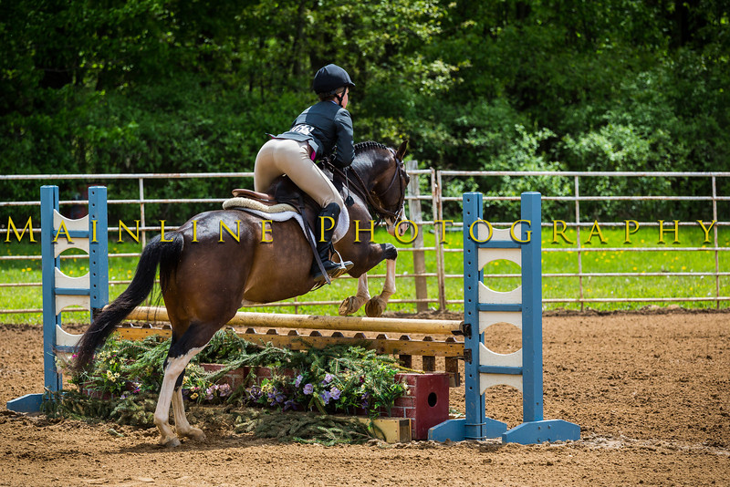 Sewickley Hunt Show May 2013-274-2