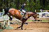 Sewickley Hunt Show May 2013-230-2