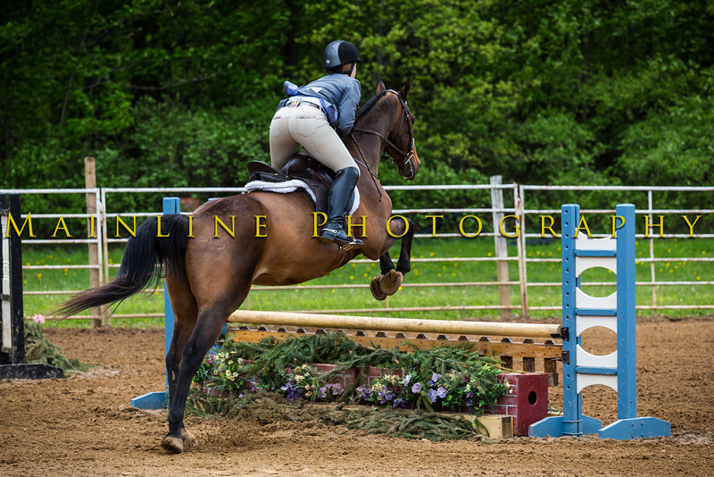 Sewickley Hunt Show May 2013-269-2