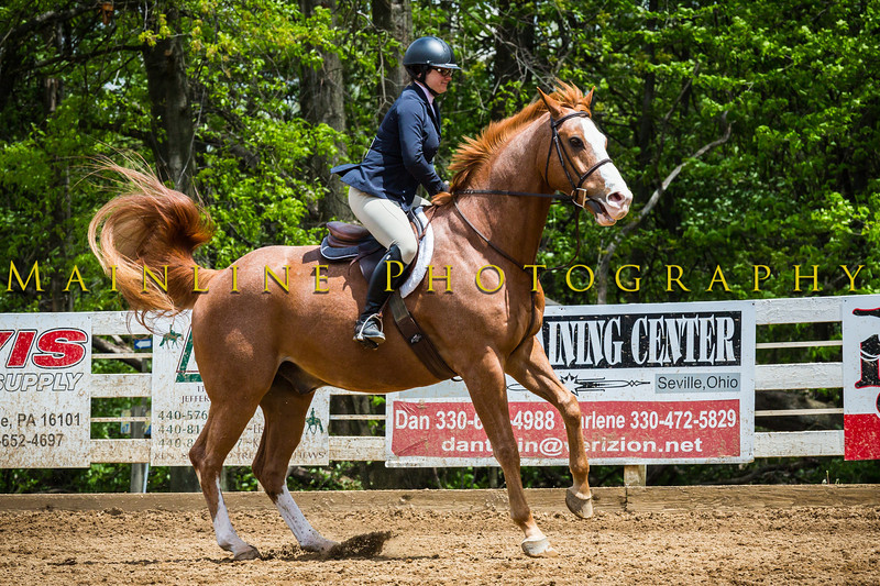 Sewickley Hunt Show May 2013-209-2