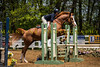 Sewickley Hunt Show May 2013-216-2