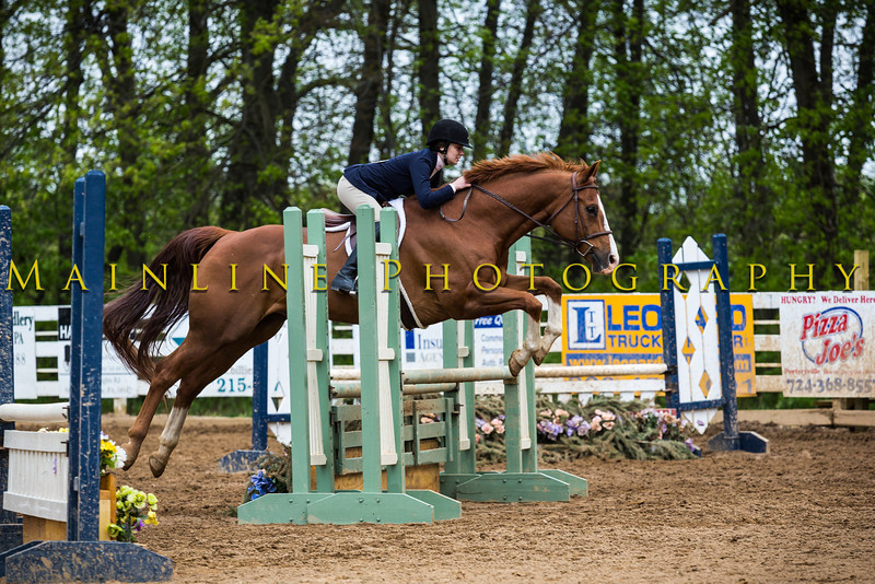 Sewickley Hunt Show May 2013-124-2