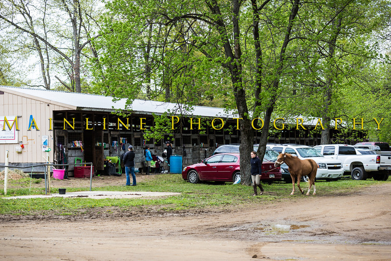 Sewickley Hunt Show May 2013-120-2