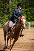 Sewickley Hunt Show May 2013-353-2
