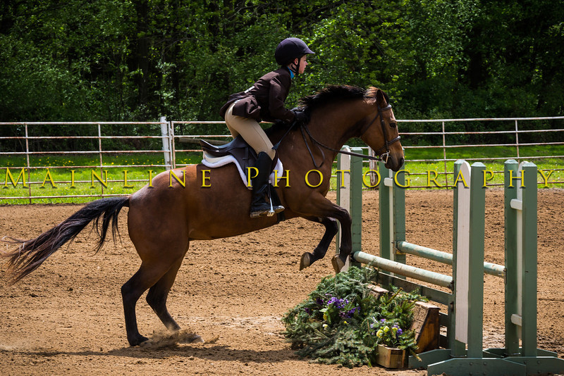 Sewickley Hunt Show May 2013-291-2
