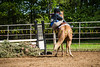 Sewickley Hunt Show May 2013-348-2
