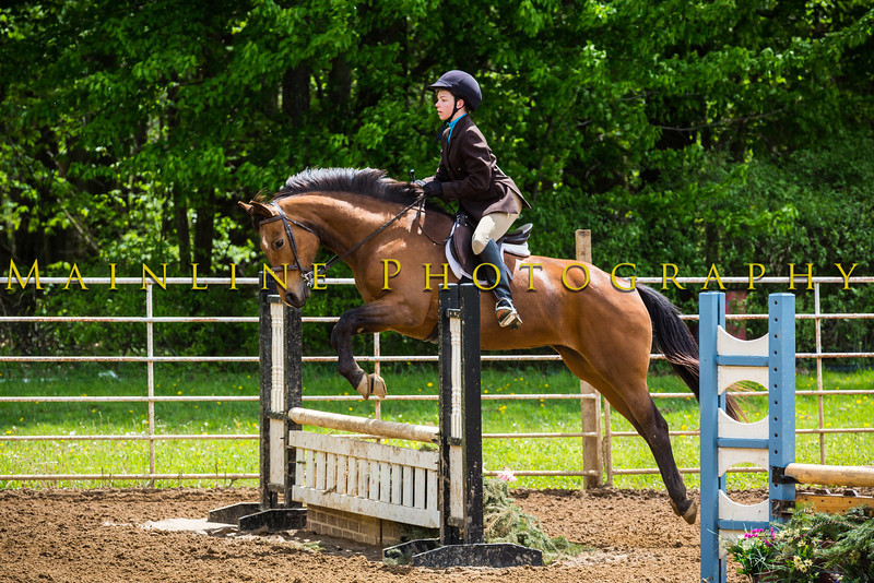 Sewickley Hunt Show May 2013-276-2