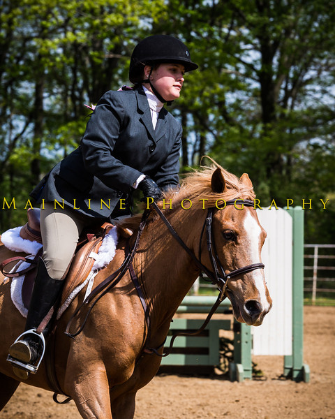 Sewickley Hunt Show May 2013-354-2