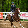 Sewickley Hunt Show May 2013-138-2