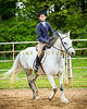 Sewickley Hunt Show May 2013-395-2