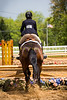 Sewickley Hunt Show May 2013-106-2