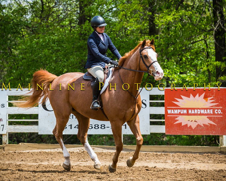 Sewickley Hunt Show May 2013-211-2