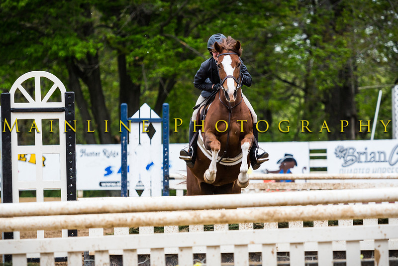 Sewickley Hunt Show May 2013-134-2