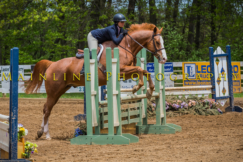 Sewickley Hunt Show May 2013-232-2