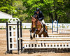 Sewickley Hunt Show May 2013-228-2