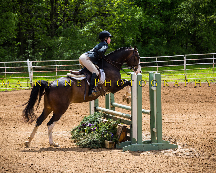 Sewickley Hunt Show May 2013-285-2