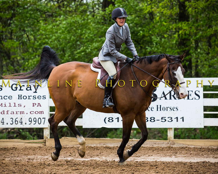 Sewickley Hunt Show May 2013-149-2