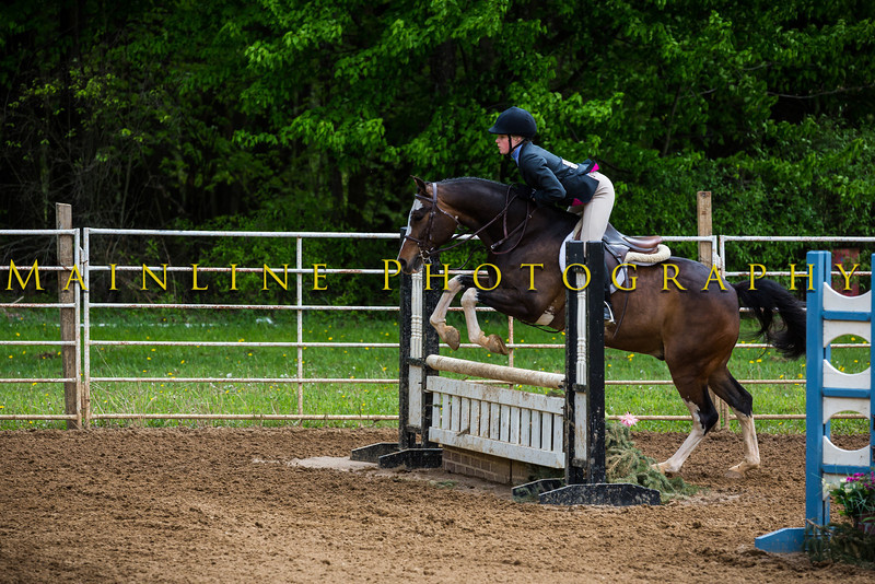 Sewickley Hunt Show May 2013-286-2