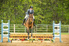 Sewickley Hunt Show May 2013-99-2