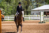 Sewickley Hunt Show May 2013-28-2