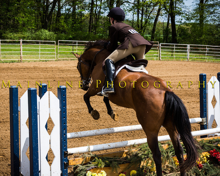 Sewickley Hunt Show May 2013-279-2