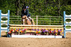 Sewickley Hunt Show May 2013-350-2