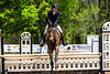 Sewickley Hunt Show May 2013-109-2
