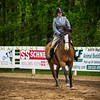 Sewickley Hunt Show May 2013-248-2