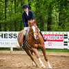 Sewickley Hunt Show May 2013-117-2