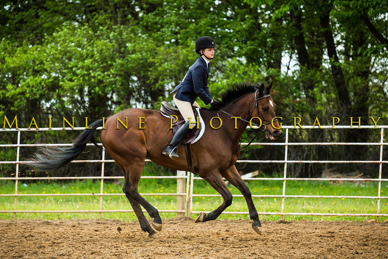 Sewickley Hunt Show May 2013-57-2