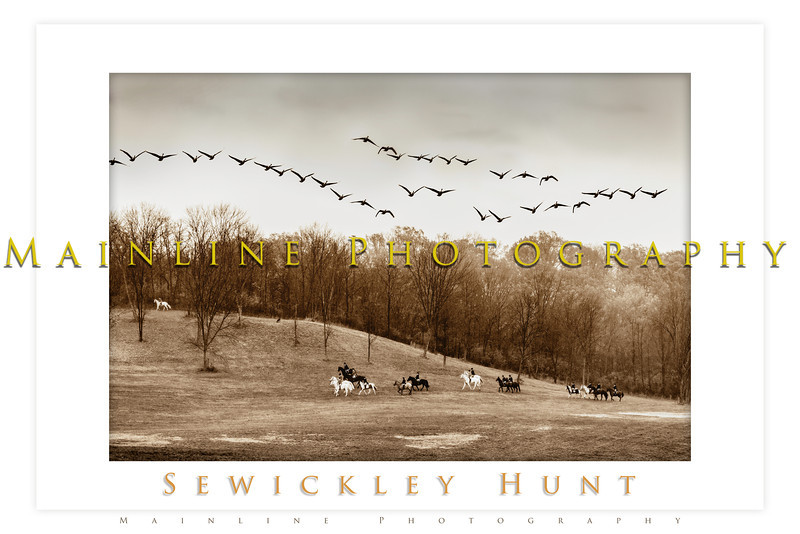 sewickley hunt oct 2012 14a
