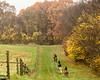 Sewickley Hunt Oct 2012-207