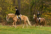 Sewickley Hunt Oct 2012-203