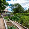 Wilpen Hall Gardens 2015-3