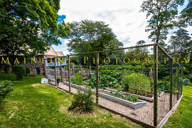 Wilpen Hall Gardens 2015-1